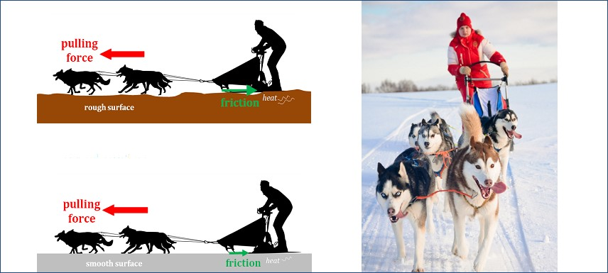 Chart of sled dogs showing pulling force and photo of sled with dogs