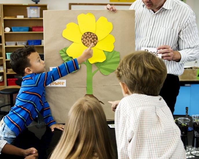 growth mindset plant model.jpg