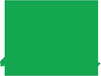 New York STEM Curriculum