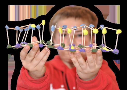 Next Generation Science Standard Student
