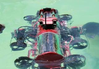cuauv-in-water.jpg