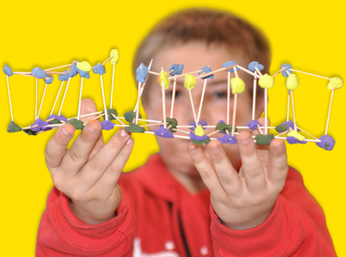 hands-on-STEM-activity-lightsparkboy.jpg