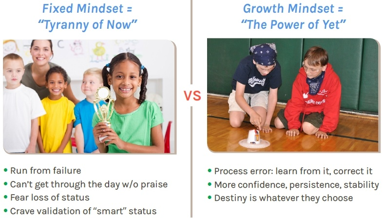 Fixed Mindset vs, Growth Mindset