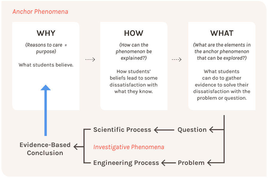 Why How What Model - NGSS